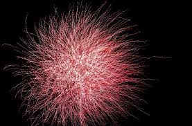 Where To Buy Sparklers In Nj Where To See Fourth Of July Fireworks In Monmouth County Nj Com