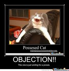 Objection Meme - objection by ilovewarriorcats12 meme center