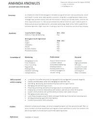 resume summary exles customer service resume summary exles imcbet info