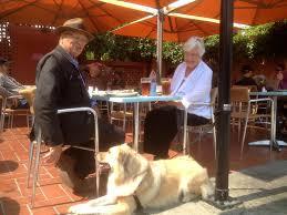 Dog Patio Take Your Dog To Dinner It U0027s Now Legal Within Limits U2014 Berkeleyside