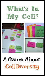 best 20 prokaryote cell ideas on pinterest science cells cells