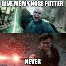Harry Potter Meme - harry potter meme imgflip