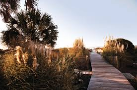 south carolina hotel packages wild dunes resort