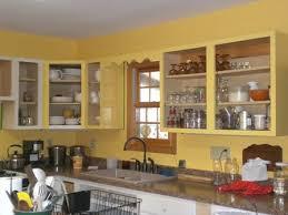 Pictures Of Kitchen Cabinet Designs With No Doors  In Windows - Kitchen cabinet without doors