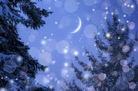 wallpapers nature spruce winter snowflakes sky moon 6808x4466