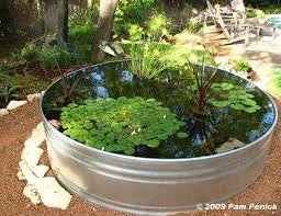 best 25 mini pond ideas on pinterest bird bath fountain