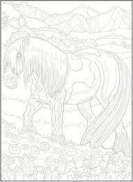 dover publications creative haven horses color