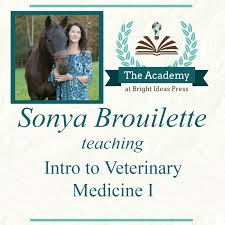intro to veterinary medicine i with sonya brouillette the