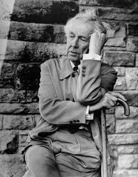 frank lloyd wright frank lloyd wright photos of an american genius and his works