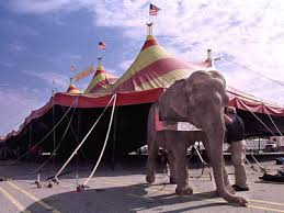 circus tent rental why the elephant atent for rent atent for rent