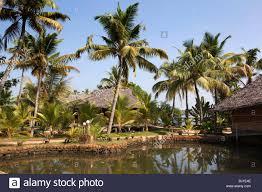 india kerala vypeen island cherai beach resort lagoonside