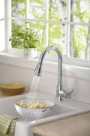 danze pull kitchen faucet sink faucet amazing danze pull out kitchen faucet decor color