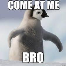 Funny Penguin Memes - badass penguin meme by tamalama memedroid