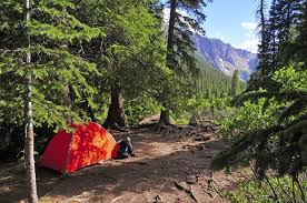 Colorado Forest images Where to go dispersed camping in colorado 303 magazine jpg