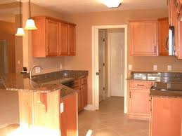 kitchen paint colors light brown cabinets u2014 desjar interior