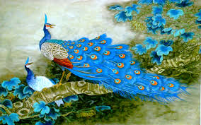 birds images qygjxz