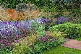 mass planting perennials astrantia ornamental grasses irises
