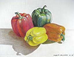 red pepper drawings fine art america