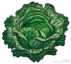 en couleurs à imprimer nature légumes chou numéro