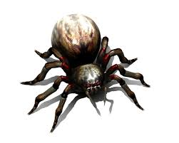 animated pictures of spiders