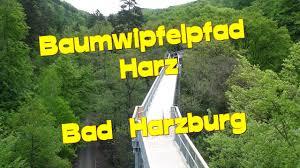Luchsgehege Bad Harzburg Baumwipfelpfad Harz Bei Bad Harzburg Die Baumwipfel Auf 700m