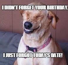 Funny Animal Birthday Memes - inappropriate birthday memes wishesgreeting
