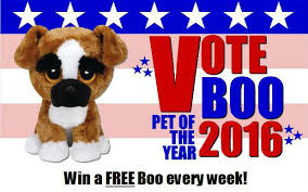 vote boo contest u2013 learning express u2013 brands included popsocket