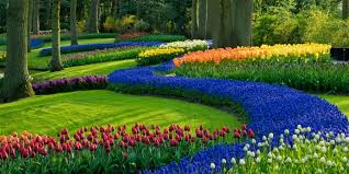 spring landscaping lawn care services in louisville dependable ground maintenance