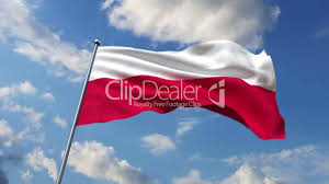 polish flag royalty free video and stock footage