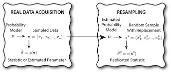 assessment of bootstrap resampling performance for pet data
