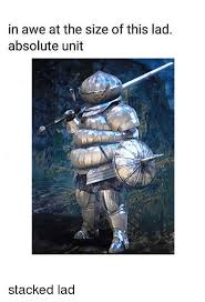 Awe Meme - in awe at the size of this lad absolute unit lad meme on me me