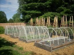 greenhouse for vegetable garden how netting for vegetable gardens is