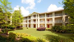 lux13 apartments apartments in gainesville fl