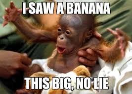 No Lie Meme - banana i saw a banana this big no lie weknowmemes
