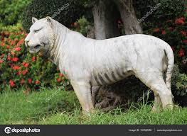 sculptures of various animals thailand south east asia u2014 stock