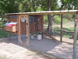 Backyard Chicken Coop Ideas 170 Best Chicken Coops Images On Pinterest Keeping Chickens