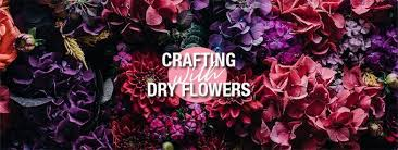 Dry Flowers Crafting With Dry Flowers U2013 A Guide To Drying And Pressing A