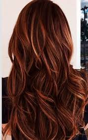 partial red highlights on dark brown hair and caramel highlights in dark brown hair red and caramel