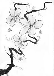 deviantart more like sketch of a plumeria tattoo by tattoos