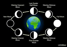 8 lunar phases of moon from moon to moon to moon