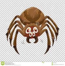 spider web transparent background wild spider on transparent background stock vector image 92327984