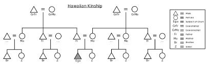 hawaiian kinship