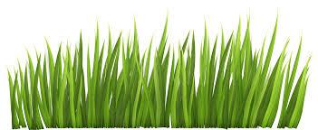 grass clip art free free clipart images 4 cliparting com
