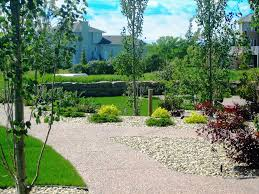 yard landscaping acreage backyard yards pinterest yard
