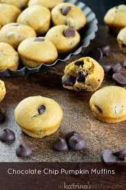 pumpkin chocolate chip mini muffin recipe in s kitchen