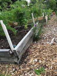 should i worry about heavy metals in my garden soil oregon