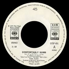 Lyrics For Comfortably Numb Pink Floyd Archives Japanese 45s Discography