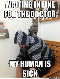 Talking Cat Meme - it s the cat talking by ducani meme center