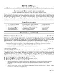 executive resume example executive sales resume example sales