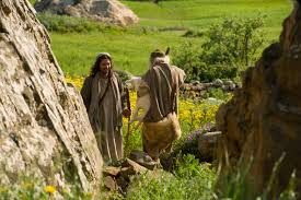 jesus declares the parable of the lost sheep